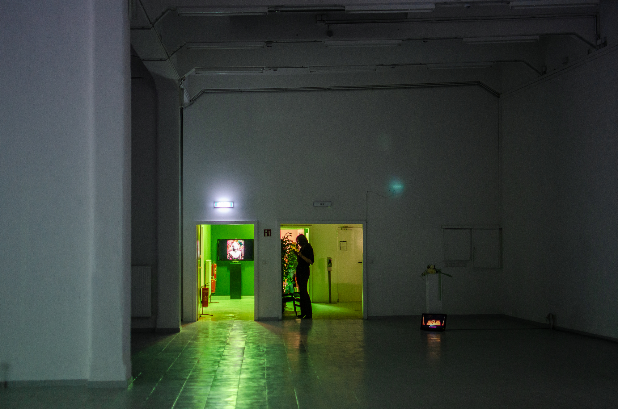 In-Escalation-ao-kunsthalle-PILOTENKUECHE-online-residency-vernissage-photos-Fanni-Papp-18