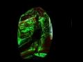Emily-Wiesniewski_plantspeopleprecatiy_score_exhibition1_galerie-kub_video-still_PILOTENKUECHE-online-residency-program_PILOTENKUECHE-international-art-program
